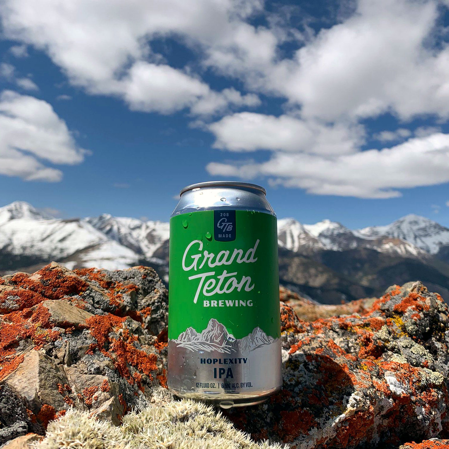 Grand Teton Hoplexity IPA